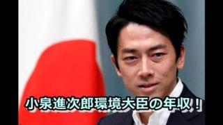 小泉進次郎環境大臣の年収!給料以外の収入,所得はいくら?_ai
