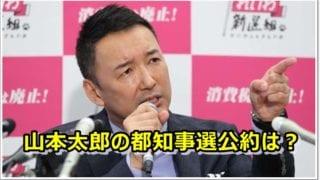 山本太郎の都知事選公約は?選挙公報や出馬会見の動画まとめ(2020)
